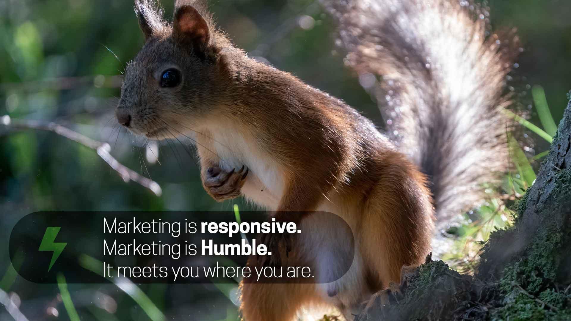 wakilisha-creative-enterprise-marketing-is-responsive.-Marketing-is-humble